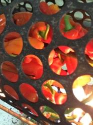 1 poner los pimientos en el tambor