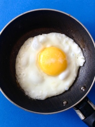 27 huevo frito