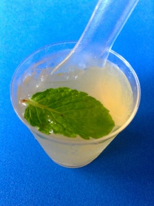 gelatina de mojito