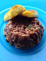 gallo pinto coloradoo