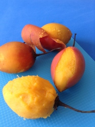 2 pelar los tomates de arbol