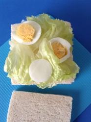 5 poner lechuga y huevo duro